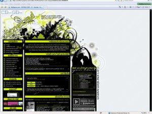 myspace.com/dzynedotcom