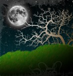 Pretty Moon and Tree.