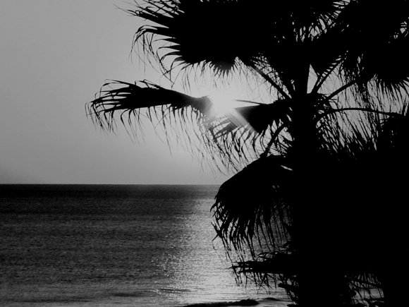 Black & White Beach Sunset. Stock Photos · Click to view original image