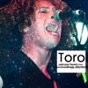 Ray Toro 2