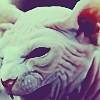 lady gaga / bad romance / cat
