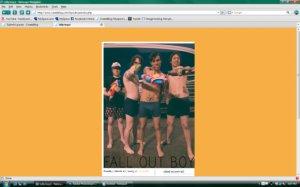 Fall Out Boy (Silly Boys)