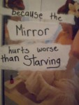 This Mirror Hurts.