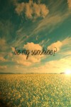 be my sunshine