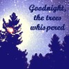 Goodnight the Trees Whispered