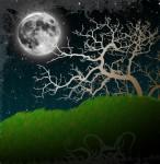 Pretty Moon and Tree.
