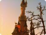 Disney in a new light