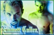 Twilight_Emmett Cullen