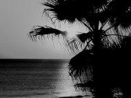 Black & White Beach Sunset
