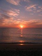 Sunshine in the Cape