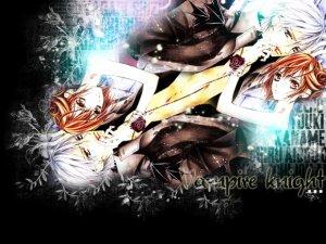TN: L10 Vampire Knight.