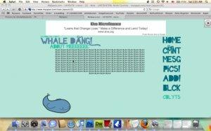 whale dang